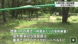 茨城県ひたち海浜公園2