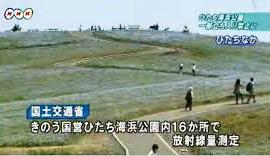 茨城県ひたち海浜公園