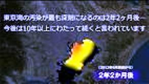 東京湾汚染 2012.6