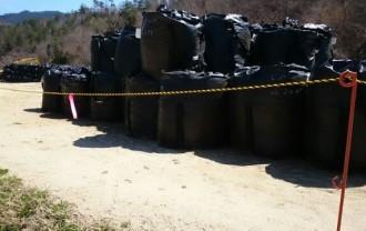 除染土 黒袋