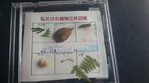 ゴーワク 私だけの立体植物図鑑