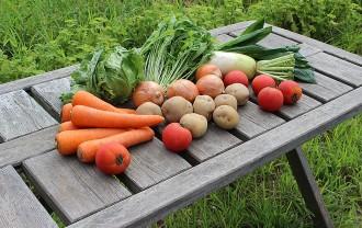 愛農食品センター イメージ画像