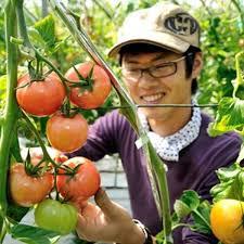三箇牧トマト
