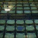 9月29日、日立製作所、東芝、三菱重工業の原子炉メーカー3社が原子力発電所で使う燃料事業の統合に向けて調整していることが分かった。年内にも基本合意し、来年春の統合を目指す。写真は燃料プール、2015年4月フランスで撮影(2016年 ロイター/Benoit Tessier)
