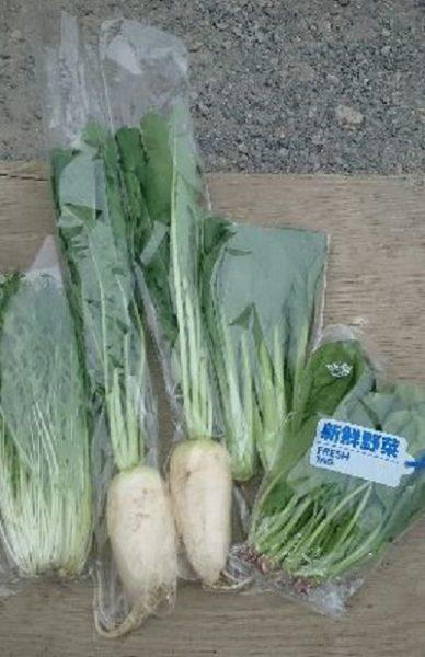 おまかせ野菜セット 5.09